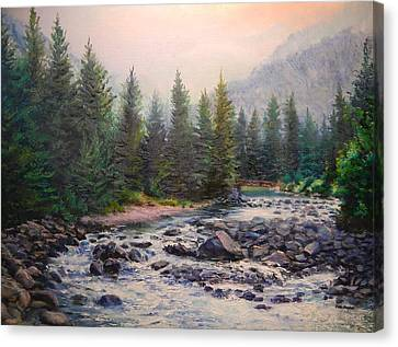 Misty Morning On East Rosebud River Canvas Print by Patti Gordon