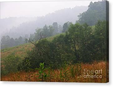 Misty Morning On The Farm Canvas Print by Thomas R Fletcher