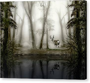 Misty Morning Reflections Canvas Print by Diane Schuster
