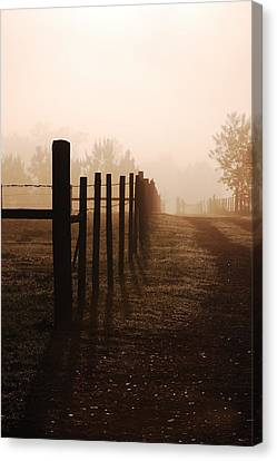 Misty Morning Canvas Print by Robert Meanor