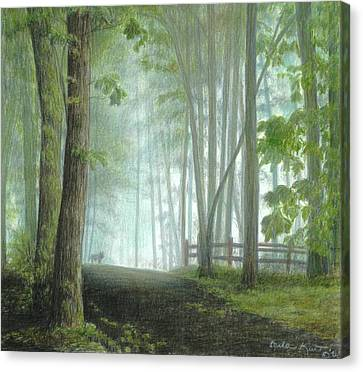 Misty Morning Visitor Canvas Print by Carla Kurt