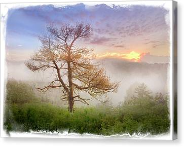 Misty Mountain Canvas Print by Debra and Dave Vanderlaan
