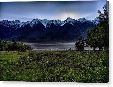 Canvas Print featuring the photograph Misty Mountain Morning Meadow  by Darcy Michaelchuk