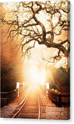 Misty Old Railroad Bridge At Near Historic Niles 7d10745 Canvas Print