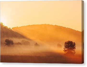 Misty Rays Canvas Print by Todd Klassy