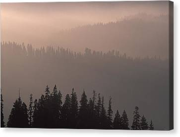 Misty Ridges And Valleys - Sequoia Canvas Print by Soli Deo Gloria Wilderness And Wildlife Photography