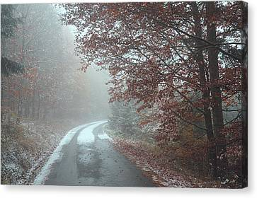 Misty Road. Series In Mysterious Woods Canvas Print by Jenny Rainbow