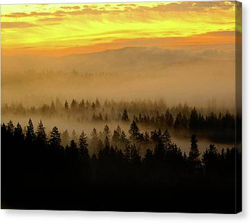 Canvas Print featuring the photograph Misty Sunrise by Ben Upham III