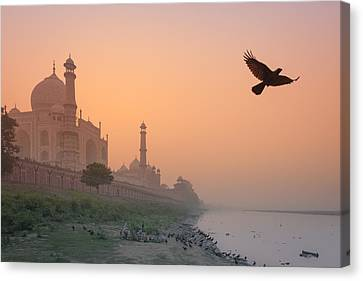 Misty Taj Mahal Canvas Print by Marji Lang