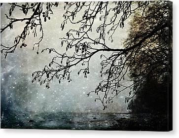 Misty Tide Canvas Print by Randi Grace Nilsberg