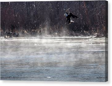 Canvas Print featuring the photograph Misty Water Eagle by Randy Scherkenbach