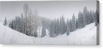 Misty Winter Panorama Canvas Print