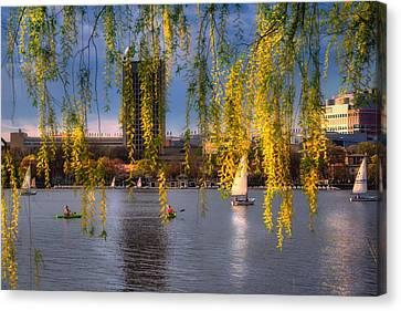 Spring Scenes Canvas Print - Mit Sailing Pavilion - Boston by Joann Vitali
