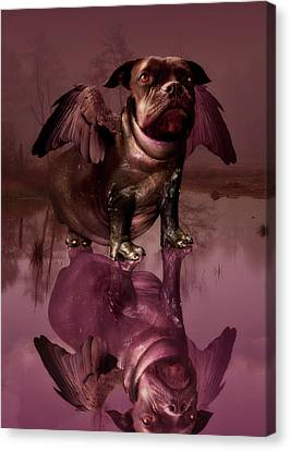 Strange Canvas Print - Mixed Breed by Mountain Dreams