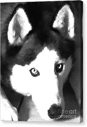Mixed Media Expressive Siberian Husky A40417 Canvas Print by Mas Art Studio