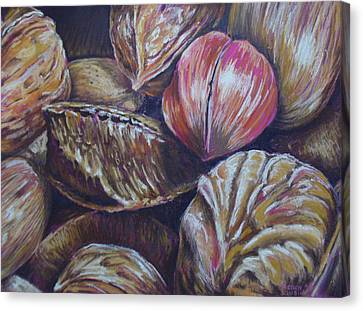 Mixed Nuts Canvas Print