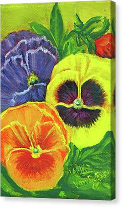 Mixed Pansy Seed Packet Canvas Print