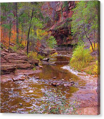 Mn1212 Canvas Print by Mikes Nature