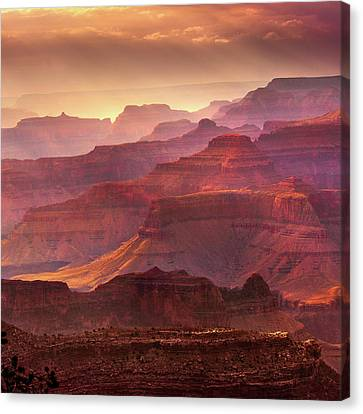 Mn1733 Canvas Print by Mikes Nature