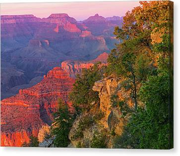 Grand Canyon National Park Canvas Print - Canyon Dusk by Mikes Nature