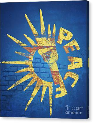 Moar Peace Canvas Print