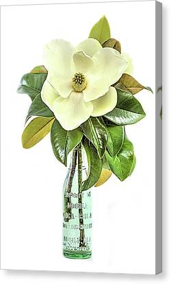 Mobile Magnolia Canvas Print