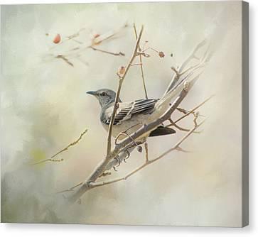 Mockingbird II Canvas Print