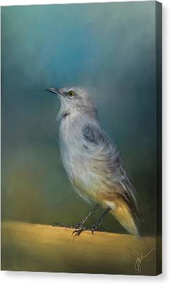 Mockingbird Canvas Print - Mockingbird On A Windy Day by Jai Johnson