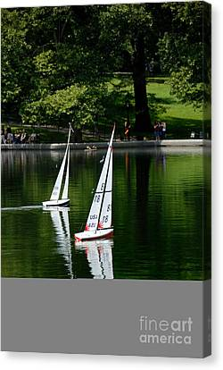 Model Boats Central Park New York Canvas Print by Amy Cicconi