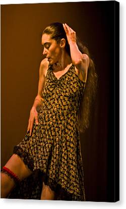 Modern Dance 16 Canvas Print by Catherine Sobredo