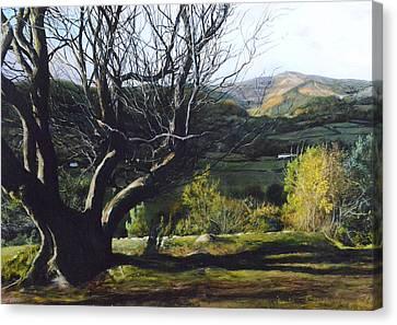 Moel Famau From Loggerheads Canvas Print