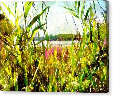 Canvas Print featuring the painting Mohegan Lake In The Brush by Derek Gedney