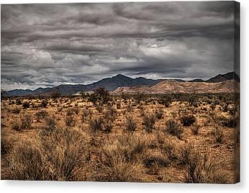 Mojave Landscape 001 Canvas Print
