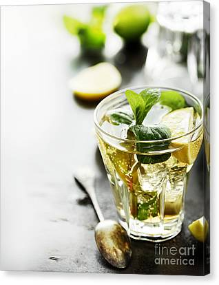 Fruits Canvas Print - Mojito by Jelena Jovanovic