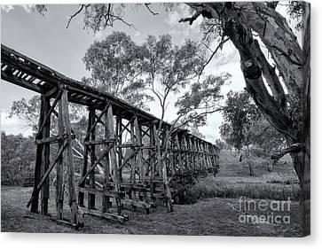 Mollisons Creek Trestle Bridge Canvas Print by Linda Lees