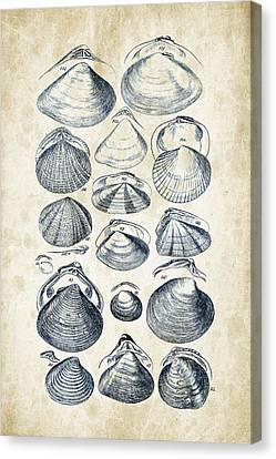 Mollusks - 1842 - 05 Canvas Print