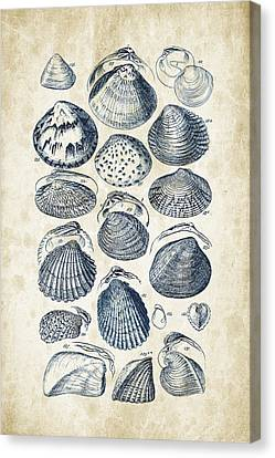Educational Canvas Print - Mollusks - 1842 - 06 by Aged Pixel