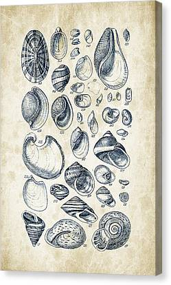 Mollusks - 1842 - 13 Canvas Print