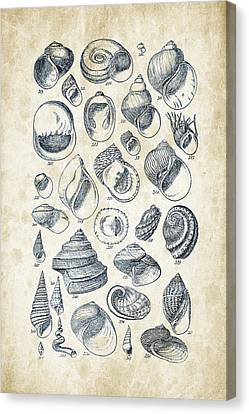 Mollusks - 1842 - 15 Canvas Print