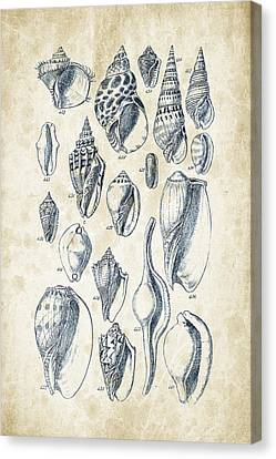 Mollusks - 1842 - 20 Canvas Print