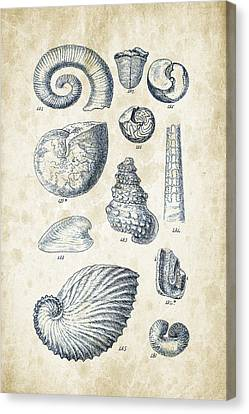Mollusks - 1842 - 23 Canvas Print