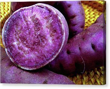 Moloka'i Purple Sweet Potatoes Canvas Print by James Temple