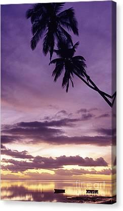 Molokai Sunset Canvas Print by Bob Abraham - Printscapes