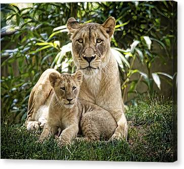Mom And Baby Canvas Print