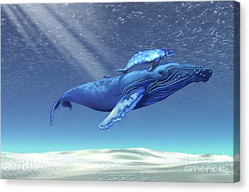 Mom And Baby Humpback Whales Swim Canvas Print