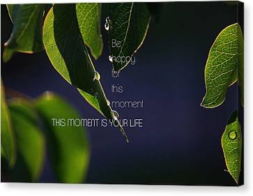 Moment In Life Canvas Print by Dejan Milic