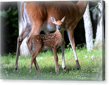 Mommy And Me Canvas Print by Brenda Bostic
