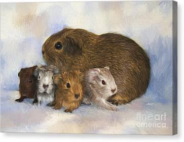 Cavy Canvas Print - Mommy With Children by Jutta Maria Pusl