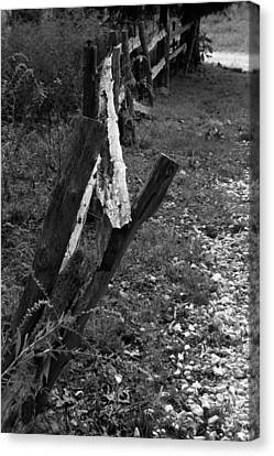 Canvas Print featuring the photograph Momsvisitfence2 by Curtis J Neeley Jr