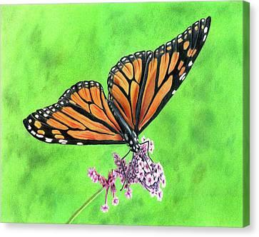 Monarch Canvas Print by Ann Milner